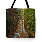 Looking Down Flume Gorge Tote Bag