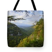 Looking Down The Canyon Tote Bag