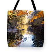 Looking Down The Eno River Tote Bag