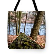 Looking Downhill Tote Bag