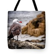 Looking For Dinner Tote Bag