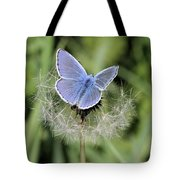 Looking For Nectar In All The Wrong Places Tote Bag