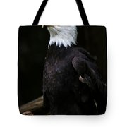 Looking For Strength Tote Bag by Athena Mckinzie