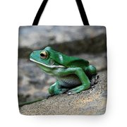 Looking Green Tote Bag