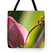 Looking Into A Pink Bud Tote Bag