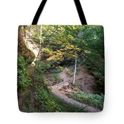Looking Into Devil's Punch Bowl Wildcat Den Tote Bag