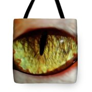 Looking Into The Soul Tote Bag