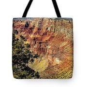 Looking Into The South Rim Tote Bag