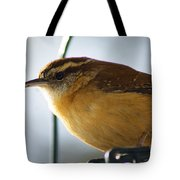 Looking Large Tote Bag