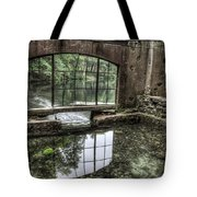 Looking Out 2 - Paradise Springs Spring House Interior  Tote Bag