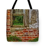 Looking Out At Darien Tote Bag