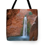 Looking Out From The Cave Tote Bag