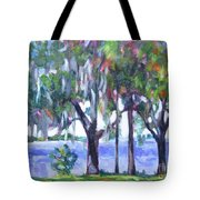 Looking Out On The Bay Tote Bag