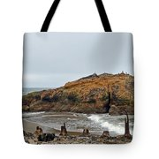 Looking Out On The Pacific Ocean From The Sutro Bath Ruins In San Francisco  Tote Bag