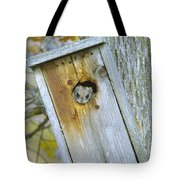 Looking Outside The Box Tote Bag