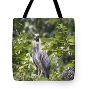 Looking Right At You Tote Bag