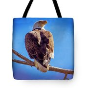 Looking Right Tote Bag by Bob Hislop