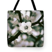Looking Through The Blossoms 2 By Kaye Menner Tote Bag