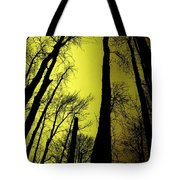 Looking Through The Naked Trees  Tote Bag