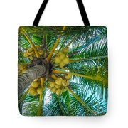 Looking Up A Coconut Tree Tote Bag