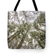 Looking Up At Snow Covered Tree Tops Tote Bag
