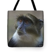 Looking Up... Tote Bag