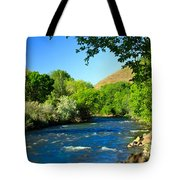 Looking Up Pine Creek Tote Bag