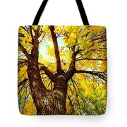 Looking Up Tote Bag