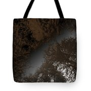Looking Up Through Copper Forest Tote Bag