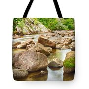 Looking Upstream The Colorado St Vrain River Tote Bag