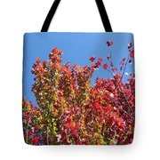 Looking Upward Tote Bag