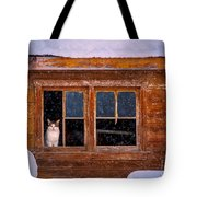 Looks Cold Out There Tote Bag