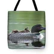 Loon Chick - Big Yawn Tote Bag