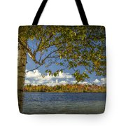 Loon Lake In Autumn With White Birch Tree Tote Bag