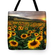 Lord Of The Sun Tote Bag