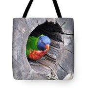 Lorikeet - Peek-a-boo Tote Bag