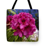 Lorna Webster Smith Truss Tote Bag