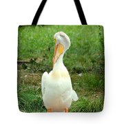 Losing A Feather Tote Bag