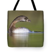 Loss-neck Grebe Tote Bag
