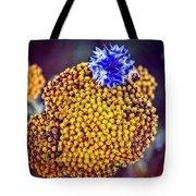 Lost Cornflower Tote Bag