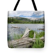 Lost Lake Colorado II Tote Bag