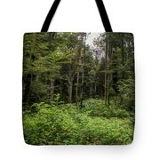 Lost My Way Tote Bag