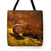Lost Shell Tote Bag