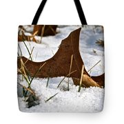 Lost To The Seasons Tote Bag