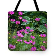 Lots Of Cosmos Tote Bag