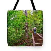 Lots Of Steps On La Chute Trail In Forillon Np-qc Tote Bag