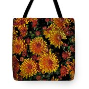 Lots Of Sunshine Tote Bag