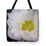 Lotus Blooming Tote Bag