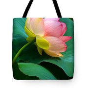 Lotus Blossom And Leaves Tote Bag by Byron Varvarigos