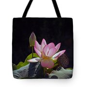Lotus Enchantment Tote Bag